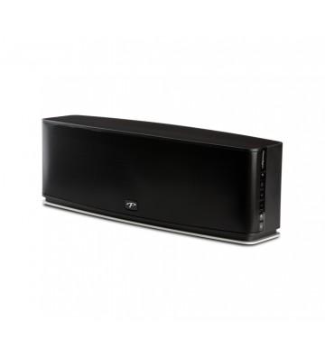 Paradigm PW 800 Stereo Speaker
